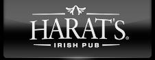 Harat's Irish Pub в Кургане афиша курган