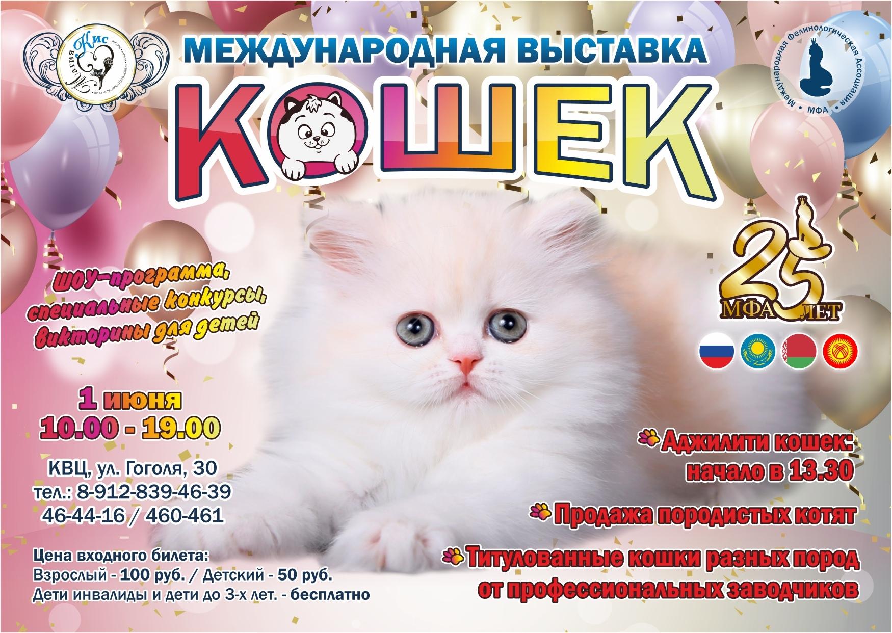 Областной культурно-выставочный центр Международная выставка кошек курган афиша расписание