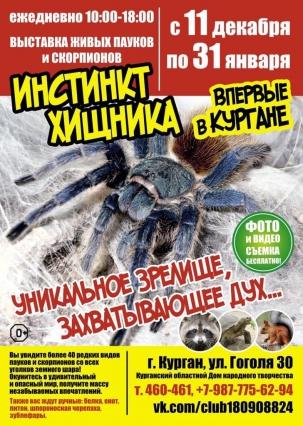мероприятие Выставка живых пауков и скорпионов «ИНСТИНКТ ХИЩНИКА» курган афиша расписание