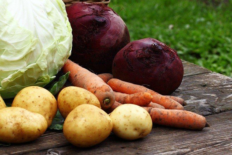 мероприятие Осенние ярмарки сельхозпродукции в Кургане курган афиша расписание