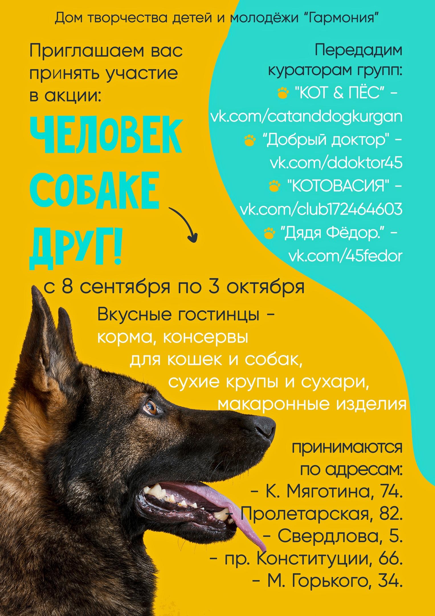 мероприятие Акция «Человек собаке друг!» курган афиша расписание